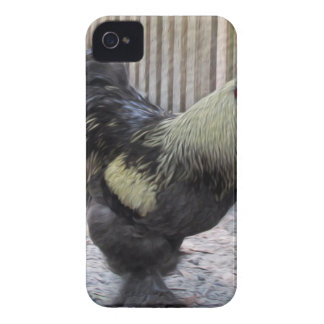 Rooster Chicken Painting iPhone 4 Cover