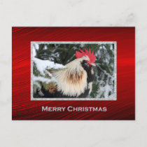 Rooster Christmas Postcard