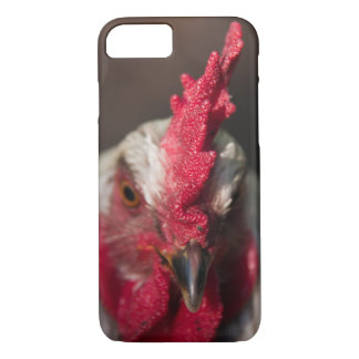 Rooster close up portrait iPhone 7 case