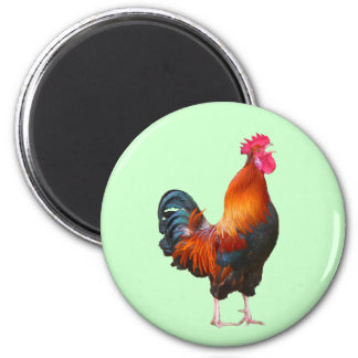 Rooster Crowing Magnet