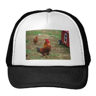 Rooster Crowing Trucker Hat