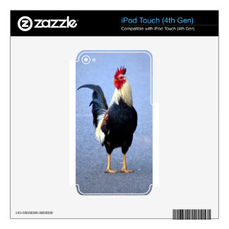 Rooster Decals For iPod Touch 4G