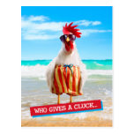 Rooster Dude Chillin' at Beach in Swim Trunks Postcard