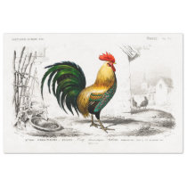 Rooster Ephemera Decoupage Vintage Farm Chicken Tissue Paper