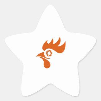 Rooster Eye Shutter Retro Star Sticker