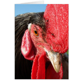 Rooster Face Card
