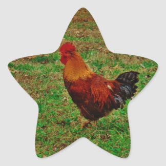 Rooster Facing Left Star Sticker