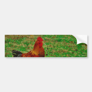 Rooster Facing right Car Bumper Sticker