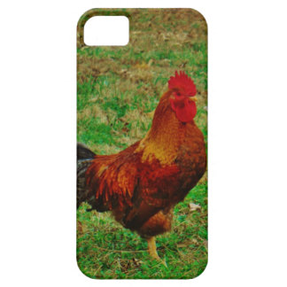 Rooster Facing right iPhone 5 Case