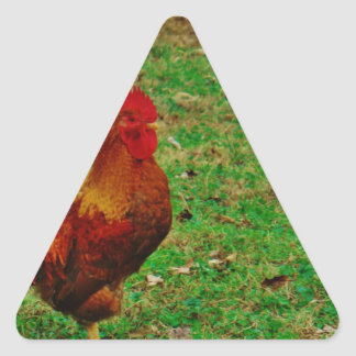 Rooster Facing right Triangle Sticker