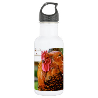 Rooster Farm Animals Nature Photography Stainless Steel Water Bottle