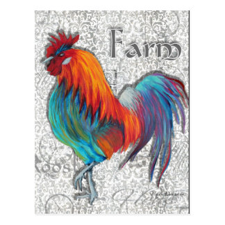 Rooster Farm Postcard