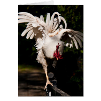 Rooster flapping wings greeting cards