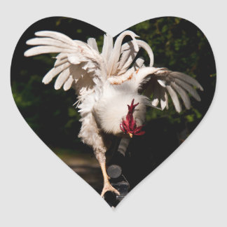 Rooster flapping wings heart sticker