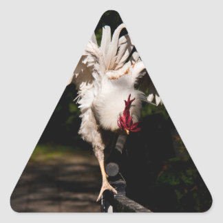 Rooster flapping wings triangle sticker