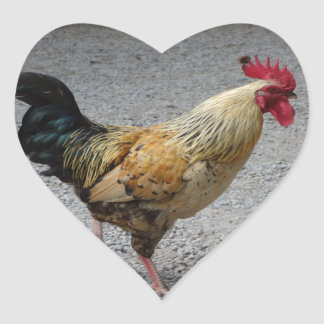 Rooster Heart Sticker