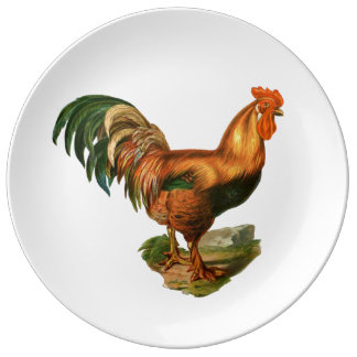 Rooster Illustration #1 Dinner Plate