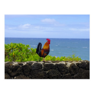 Rooster in Paradise Postcard