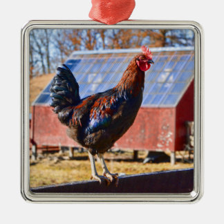 Rooster in the barnyard metal ornament