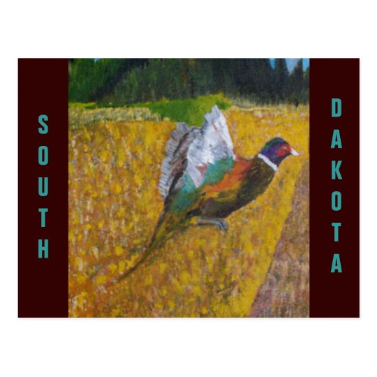 Rooster In The Field Postcard