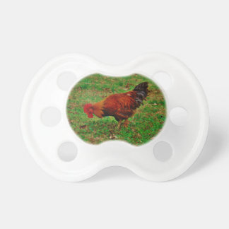 Rooster in the Grass BooginHead Pacifier
