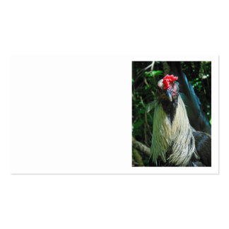 Rooster in the Hawaiian Jungle Double-Sided Standard Business Cards (Pack Of 100)
