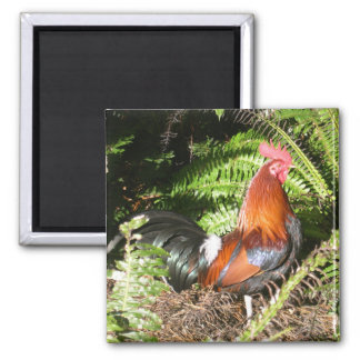 Rooster In The Leaves Magnet