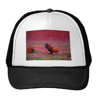 Rooster in the Purple Grass Trucker Hat