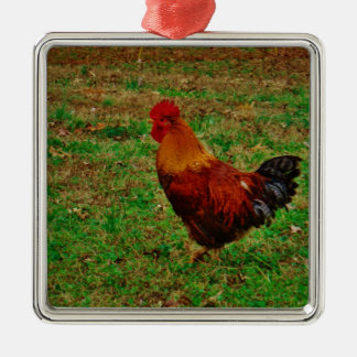 Rooster in the Yard Metal Ornament