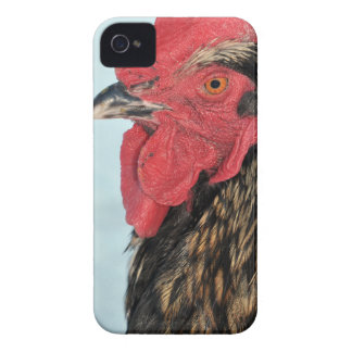 Rooster iPhone 4 Cover