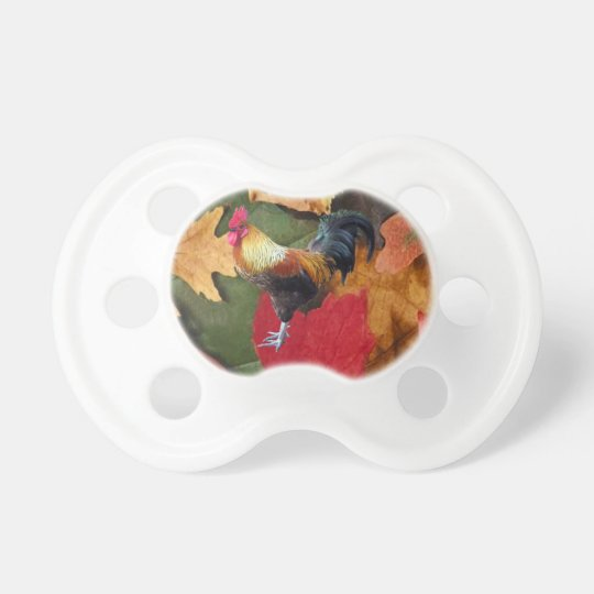 Rooster Leaves Pacifier