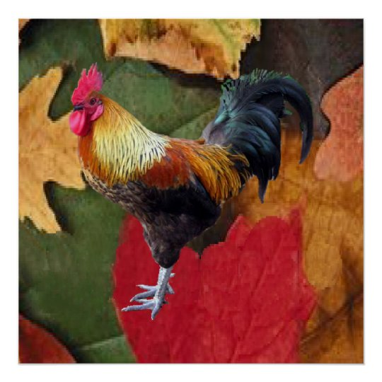 Rooster Leaves Poster