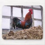 ROOSTER MOUSE PADS