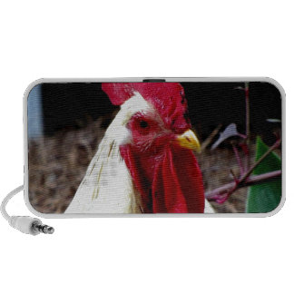 rooster observing  peaceful world laptop speakers