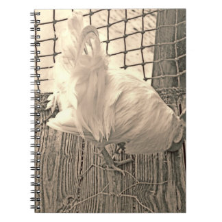 rooster on dock sepia bird image spiral notebook
