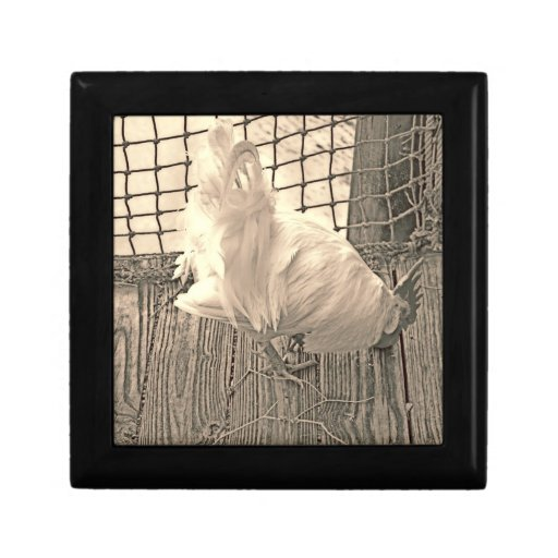 rooster on dock sepia bird image trinket box