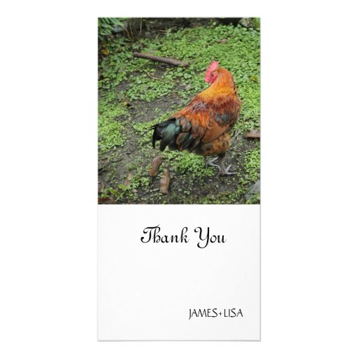 Rooster Photo Card