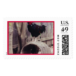 rooster - postage