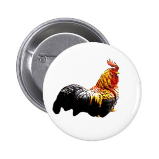Rooster Proud The MUSEUM Zazzle Gifts Pinback Button