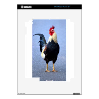 Rooster Skins For The iPad 2