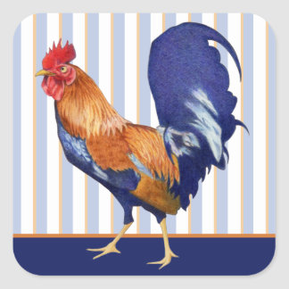 Rooster stripes Square Sticker