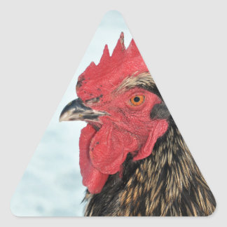 Rooster Triangle Sticker