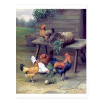 Rooster Turnip Basket Hens Postcard