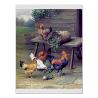 Rooster turnips farm poster