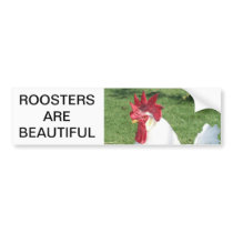 Roosters are Beautiful Bumper Sticker