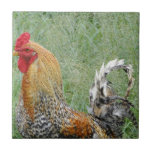 Roosters Ceramic Tile