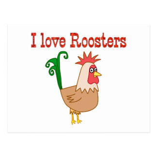 Roosters Postcard