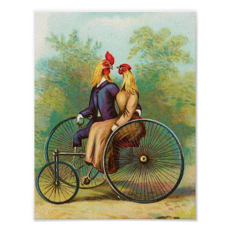 Roosters Riding a Tricycle For Two Poster