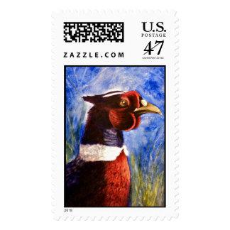 Roostin Pheasant, Postage Stamp