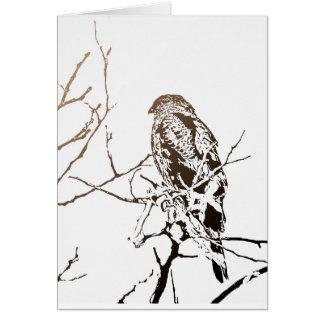 Roosting Hawk Greeting Card
